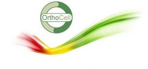 OrthoCell AG