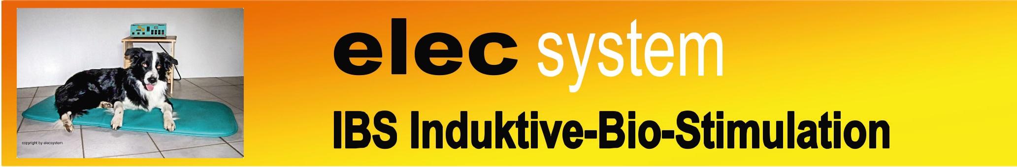 Elec Systems.Logo