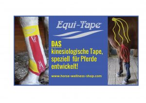 Kinesiologisches Taping 2